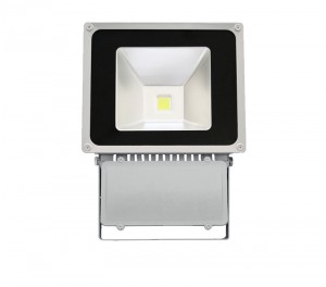 100W IP65 led flood light FL-100W-03
