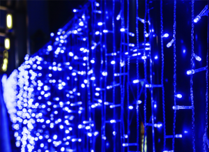 Holiday LED lights burn bright and save energy too