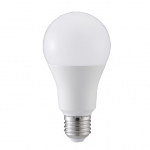 LED Light Bulbs A65-1B