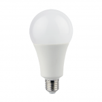 LED Light Bulbs A80-1B